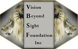 vision beyond sight center