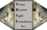 vision beyond sight center